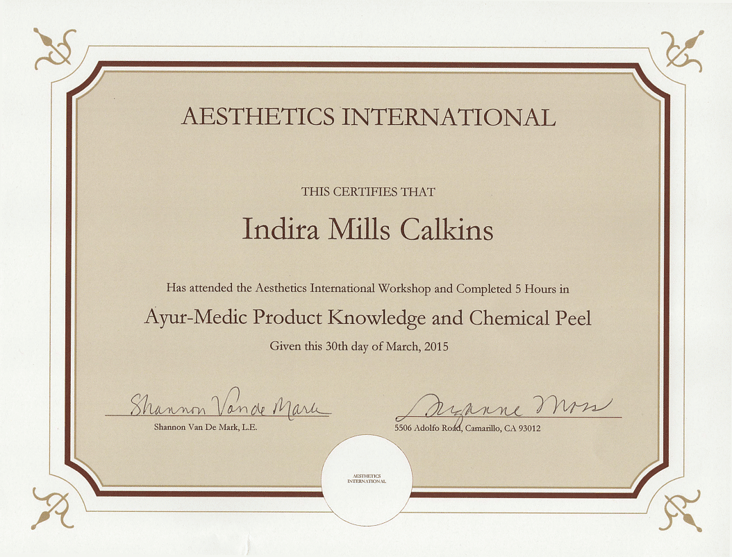 Aesthetics International Ayur Medic Chemical Peel Training Certification